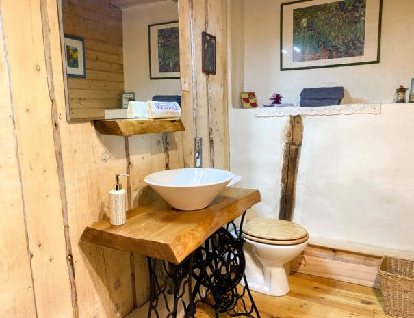 """Chambre d'hôtes """"Les Violettes"""" : lavo et WC dans la salle d'eau"""