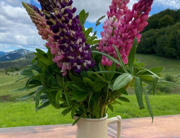 vase de fleur - ferme de médille