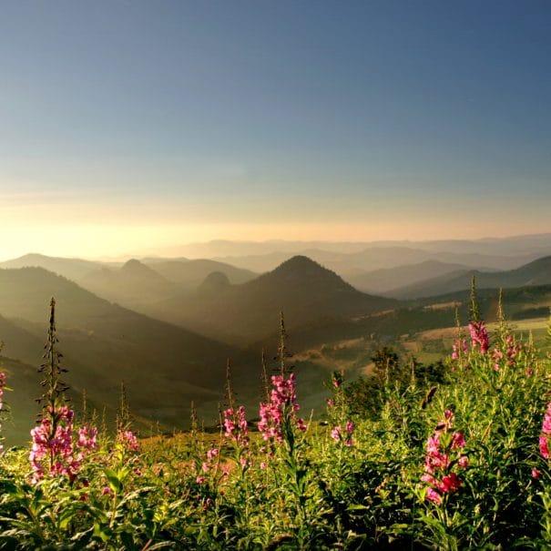 Panorama sur les mont et sucs d'Ardèche