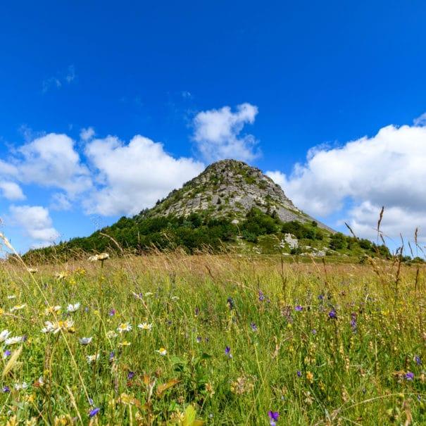 Vue sur le Mont Gerbier-de-Jonc