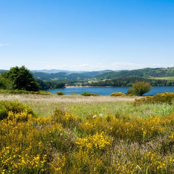 Vue sur l'ensemble du Lac d'Issarlès