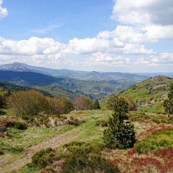 Vue panoramique sur les monts et sucs d'Ardèche
