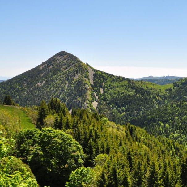 Panorama sur un Suc d'Ardèche et col des boutières