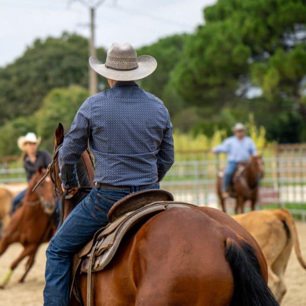 Cowboy triant du bétail au rassemblement d'Equiblues