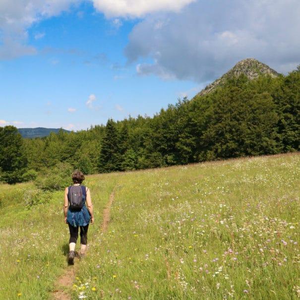 Randonneur se rendant au Mont Gerbier-de-Jonc à travers les sentiers de randonnée